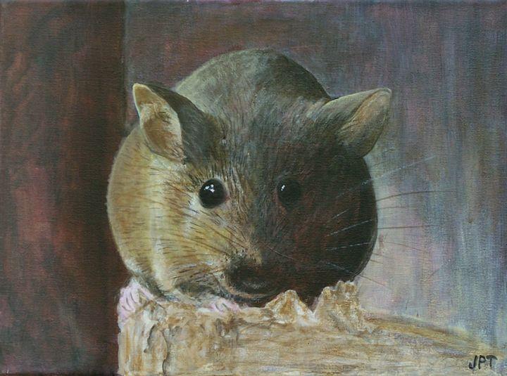 mouse-a9f05648257fecff70cad5a277d56dcc